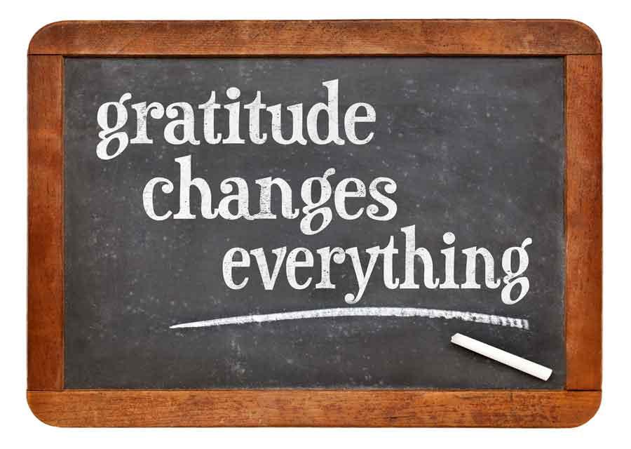 Thanksgiving The Zen of Gratitude