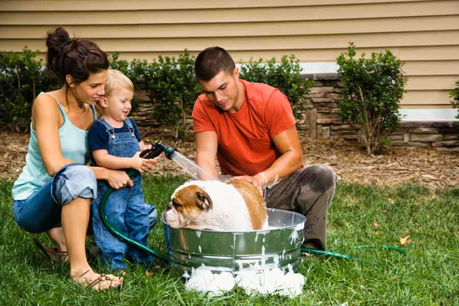 House buying Tips for Pet Lovers
